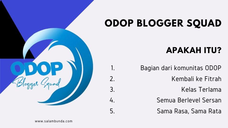 kenalan dengan ODOP Blogger Squad